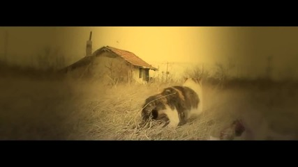 Hoodini - Нова Булка [official Video] (720p)