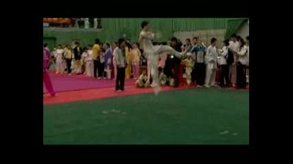 The 5th Hong Kong Wushu International Fest