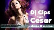 Dj Cips feat. Cesar - Shake It Mama