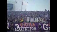 Ultras Viola