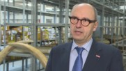 Austria: $500,000 worth of ivory seized by customs