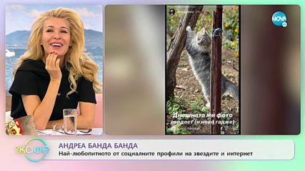 Андреа Банда Банда: Най - интересното от социалните профили на звездите - На кафе (12.11.2019)