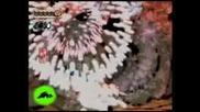 Okami - Видео Ревю