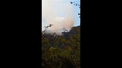 Голям пожар гори край софийското село Реброво (СНИМКИ)