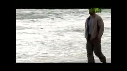 Animal planet - Диви и хищни - Акула пробива клетка