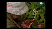 Убийства в Мидсъмър Епизод 1 Част 1/3 ( Midsomer Murders )