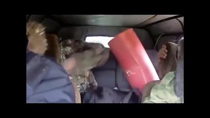 Harlem Shake - Руска версия
