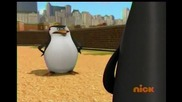 The Penguins of Madagascar - All tied up with a Boa