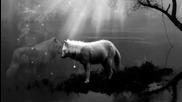 Yolwolf - Wolfog