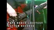 Papa Roach Scars Live