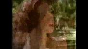 Andre Rieu Romantic Moments Part1