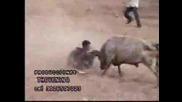 5te udara ot bikove