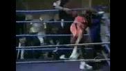 Много тъп боксьор! Не може да излезе на ринга