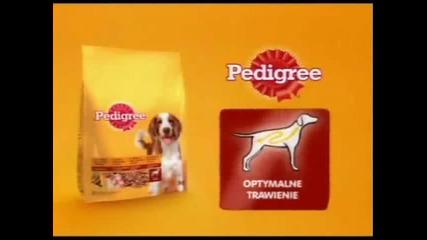 Reklama Pedigree