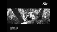 Starterass - Патриоти За България