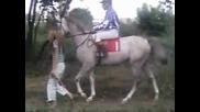 23.VII.2005 - Зент и Мецена
