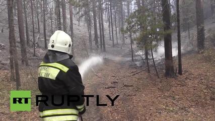 Русия: Хеликоптери се борят с горски пожар в Сибир