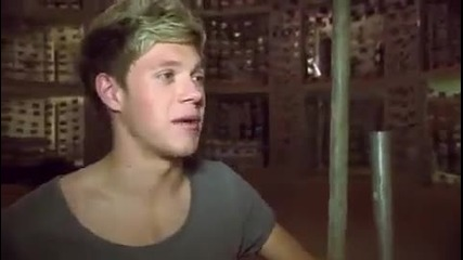 1d Day - Niall Zappar Bts Story Of My Life