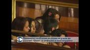 Италианският премиер потърси помощ от учени за реформи в конституцията