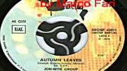 Jon - Wite Group - Autumn leaves (1975 Disco Inst.)