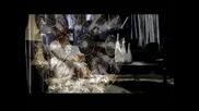 Тони Димитрова - Тръгвай щом решил си Hq