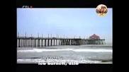 3 Смазващи Реклами На Вафли Мурени