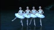 Чайковски - Балет Лебедово езеро