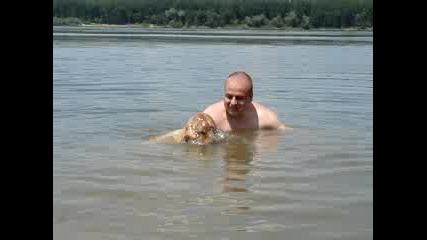 Куче Гмуркач