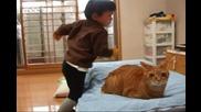 Коте и бебе пораснало 1