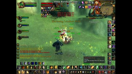 Hacker in Warsong Gulch ( Dragonfire-bg)
