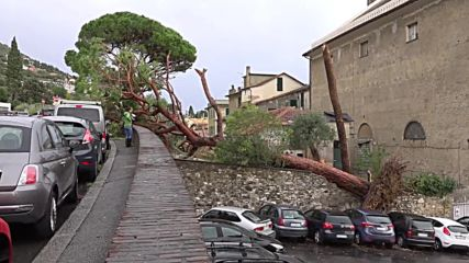 Italy: Storm with 120 km/h winds ravage city of Genoa