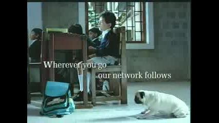 Classroom...реклама с мопсе