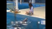 Меган Фокс си играе с делфини в нов рекламен клип