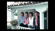 The Hollies - Musical Pictures