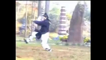 Tiger style kung fu