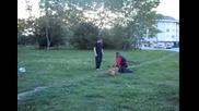 Обучение на куче (хапане)