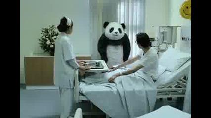 Не казвай Не на пандата!!!