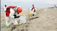 Tar Globs Wash Ashore Closing Seven Miles of Popular Los Angeles Coast