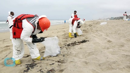 Tar Globs Wash Ashore Closing Seven Miles of Popular Los Angeles Coast