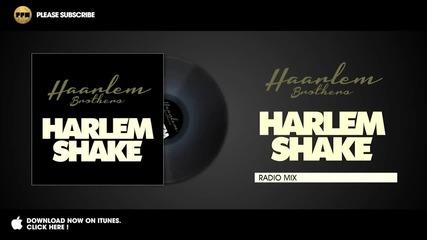 / 2013 / Haarlem Brothers - Harlem Shake