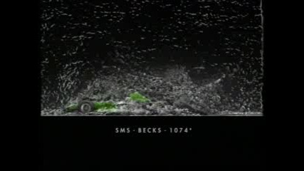 Becks Emotion