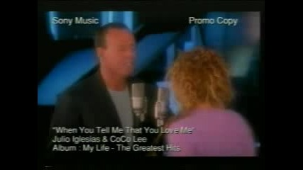 Julio Iglesias & Coco Lee - When You Tell Me That You Love Me (Превод)