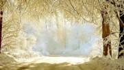 Зимни пейзажи! ... ...