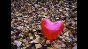 Мisho Sg & Tayra - Само твоя е любовта ми
