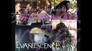 Evanescence - Bring Me To Life(BG sub)