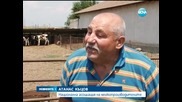 Забавени плащания заплашват с фалит хиляди земеделци - Новините на Нова