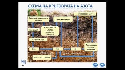 Екосистема - презентация