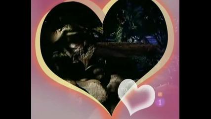 *гибелна Красота*bella Calaidades*магията на любовта на Лола и Марсело