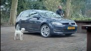 Куче се мисли за автомобил