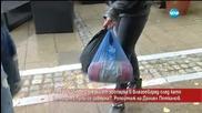Има ли избягали мечки от зоопарка в Благоевград? Репортаж на Даниел Петканов
